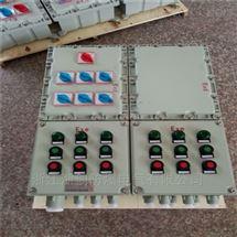 BXD51-8K防爆动力配电箱户外带防雨罩厂家