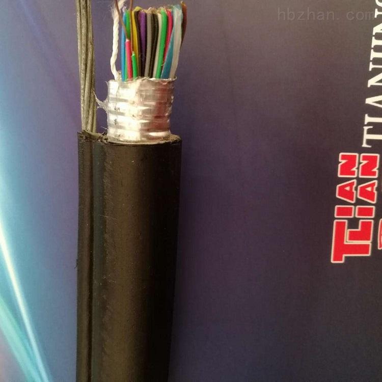 HYAC索道通讯电缆