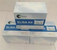 XY-9006EELISA试剂盒生产厂家