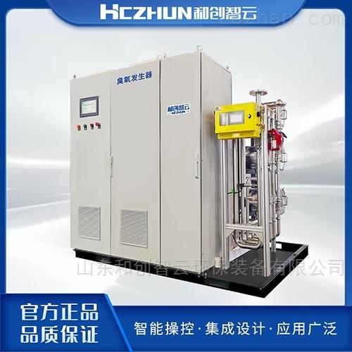 大型臭氧发生器厂家-游泳池臭氧消毒设备