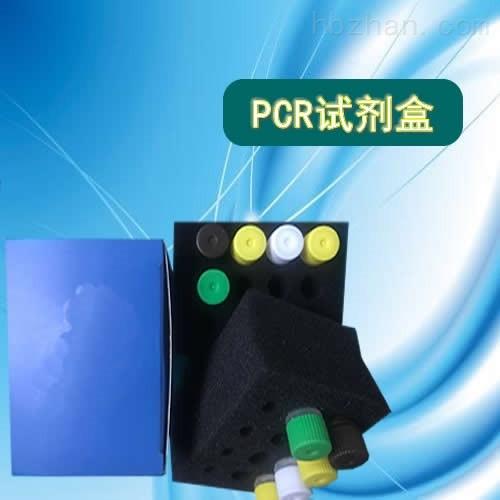 戈氏放线菌LAMP试剂盒