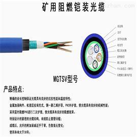 MGTS-48B1.3矿用阻燃光缆