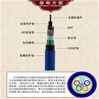 MGTSV-48B1矿用阻燃光缆