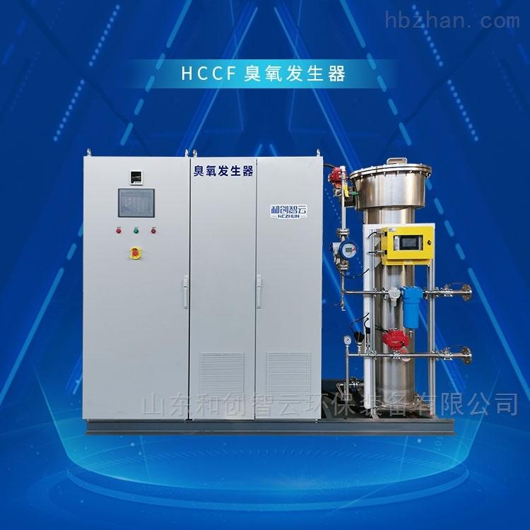 水厂氧化消毒设备_山东臭氧发生器厂家