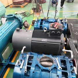 CGSR-S高压力双极串联罗茨风机