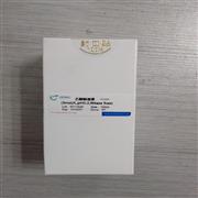 乙酸铵溶液(5mol/L,无菌)