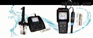 310D-01AStar A 系列台式及便携式溶解氧测量仪