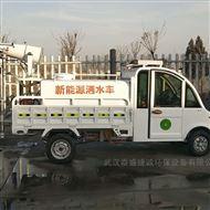 GC-50武汉新能源雾炮洒水车社区电动喷雾机
