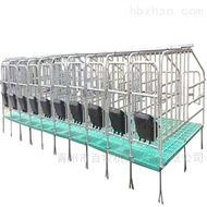 BM四川母猪限位栏-国标定位栏安装及维护