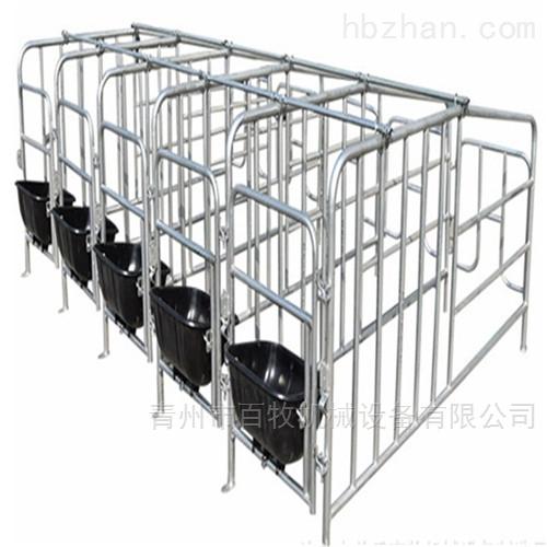 母猪定位栏-欧式限位栏厂家-尺寸