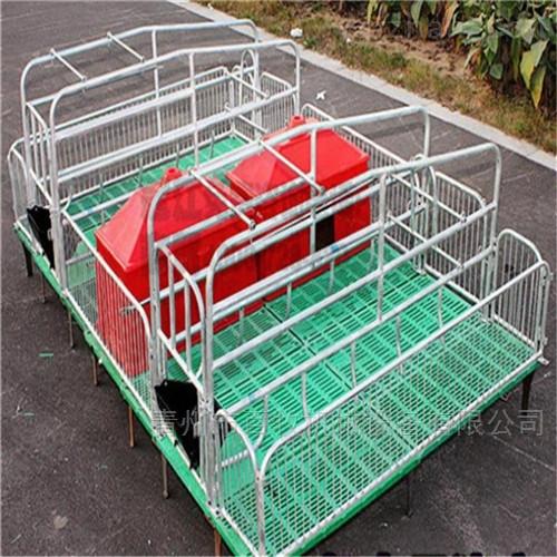新型欧式母猪产床-双体产床生产厂家