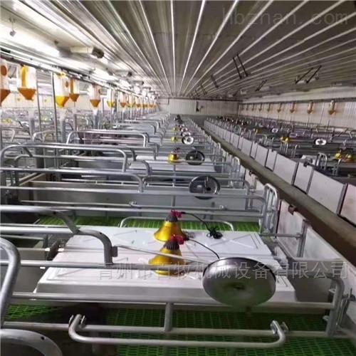 高品质母猪限位栏-定位栏厂家