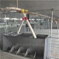 BM四川猪场限位栏-热镀锌定位栏技术参数
