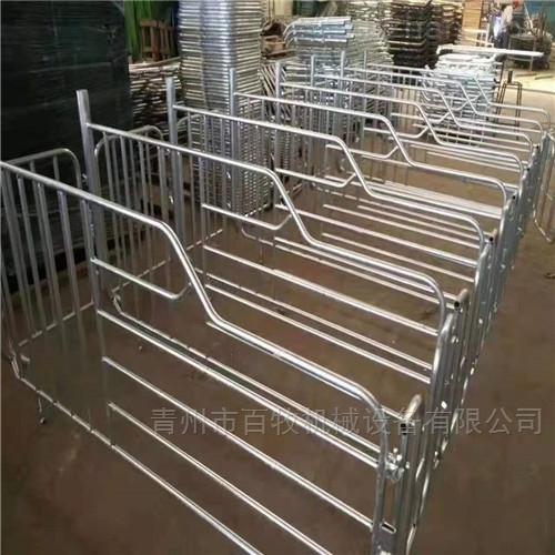 猪场新型母猪定位栏-限位栏的好处
