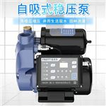 1WZB-15B自吸增压泵750W家用水塔变频恒压泵