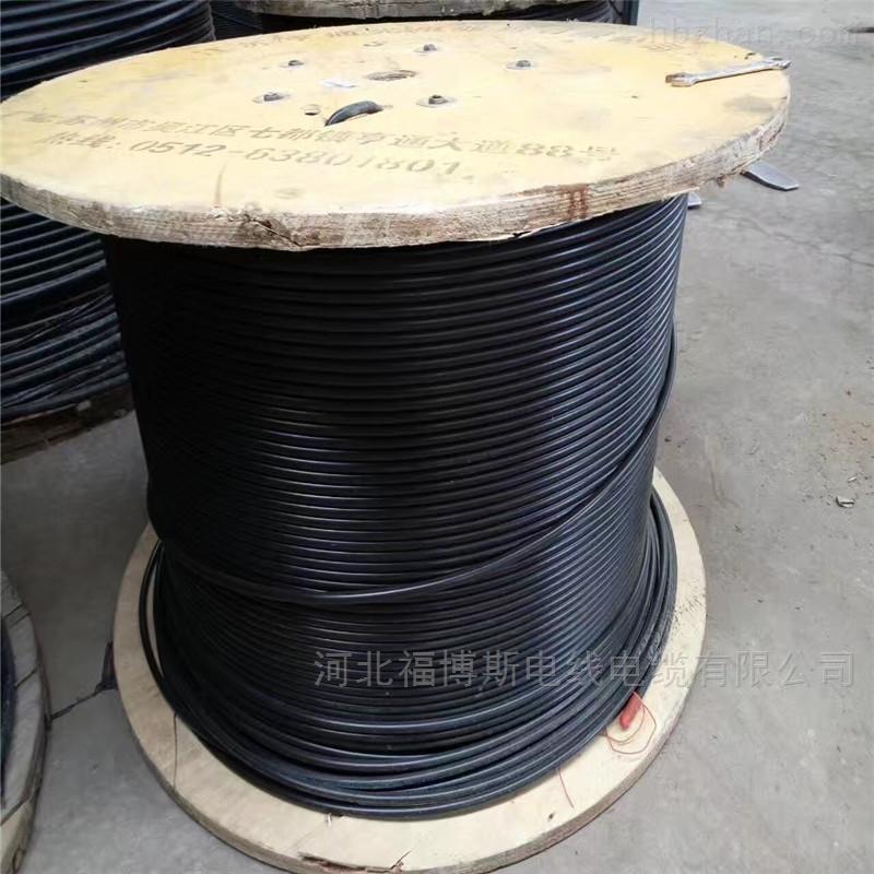 销售厂家ADSS自承式光缆12芯