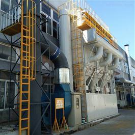 CY-FQ007石油化工废气处理设备