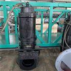 铸件式WQ潜水排污泵