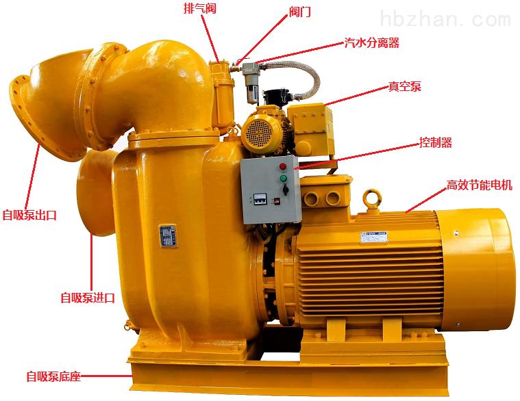 带真空辅助自吸泵结构图.png