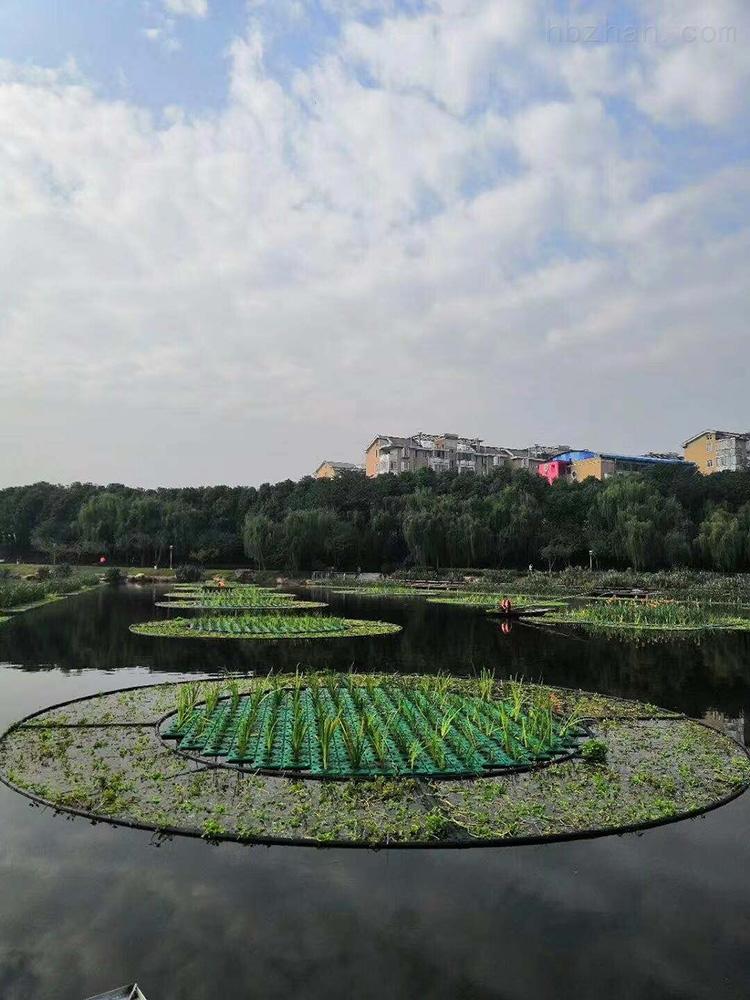 水体生态浮岛系统面积定制