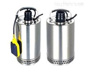 小型不锈钢潜水泵