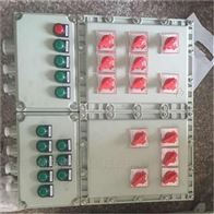 BXK-PLC带表面操作 防爆控制箱