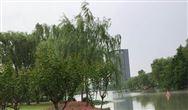 《广州市关于加强出让储备用地土壤污染防治工作方案》