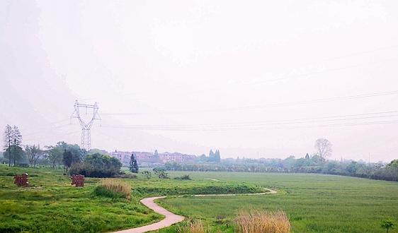 2021年3月1日实施 《深圳经济特区绿色金融条例》全文