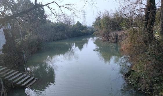 解读 河北省《农村生活污水排放标准》