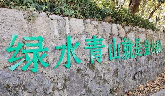 2020年中国环保产业市场现状及区域竞争格局分析
