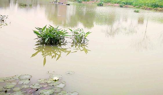 污水资源化政策加码 水质监测迎千亿市场