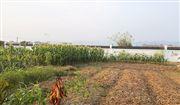 《甘肃省土壤污染防治条例》已发布