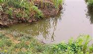 2020年国家鼓励发展的重大环保技术装备目录供需对接指南之十四:污泥处理技术装备