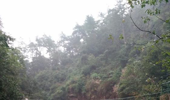 298.5万!秦皇岛市大气污染防治网格化监测设备运维服务项目招标