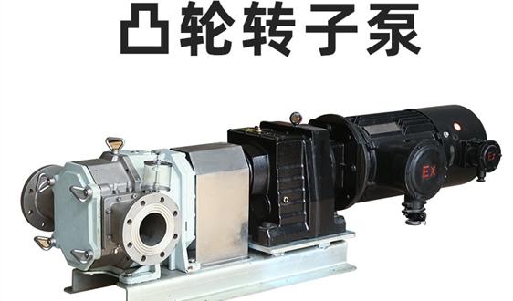 如何正確購買凸輪轉子泵