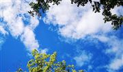 山西省生态环境厅关于在全省开展生态环境保护综合行政执法机构规范化创建(试点)工作的通知