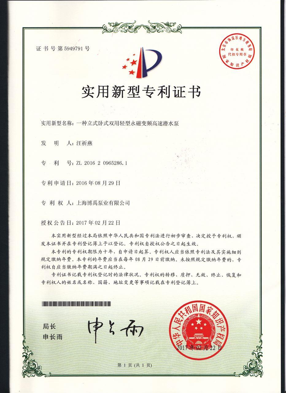 便攜式潛水泵專利證書
