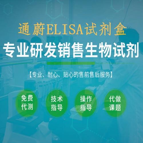大鼠基质金属蛋白酶5ELISA检测试剂盒