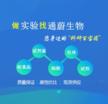 <strong><strong><strong>小鼠氧化低密度脂蛋白抗体检测试剂盒</strong></strong></strong>
