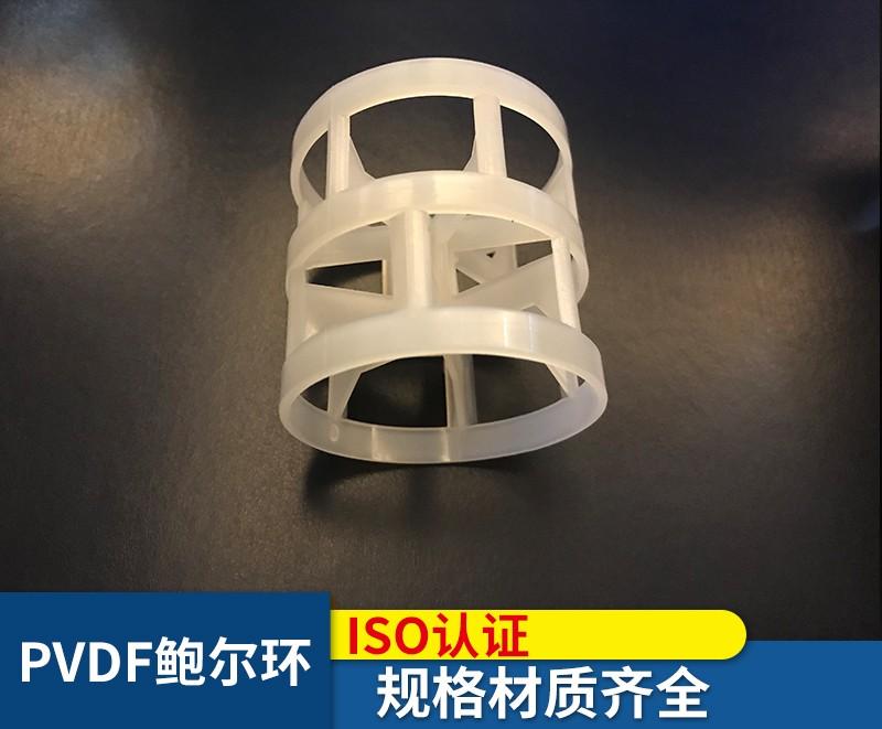 PVDF塑料填料.jpg